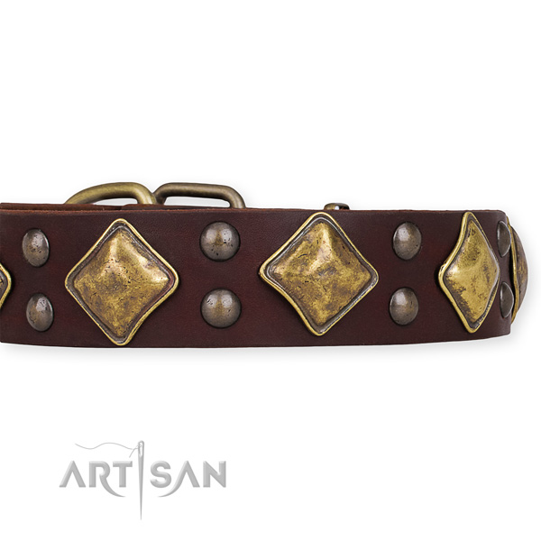 Full grain natural leather dog collar with incredible rust-proof decorations