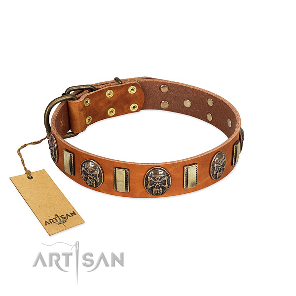 Adjustable full grain genuine leather dog collar for everyday use