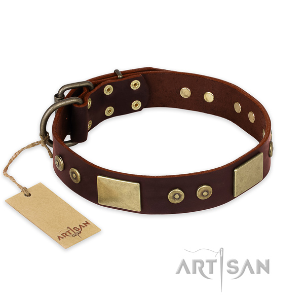 Impressive full grain leather dog collar for daily use