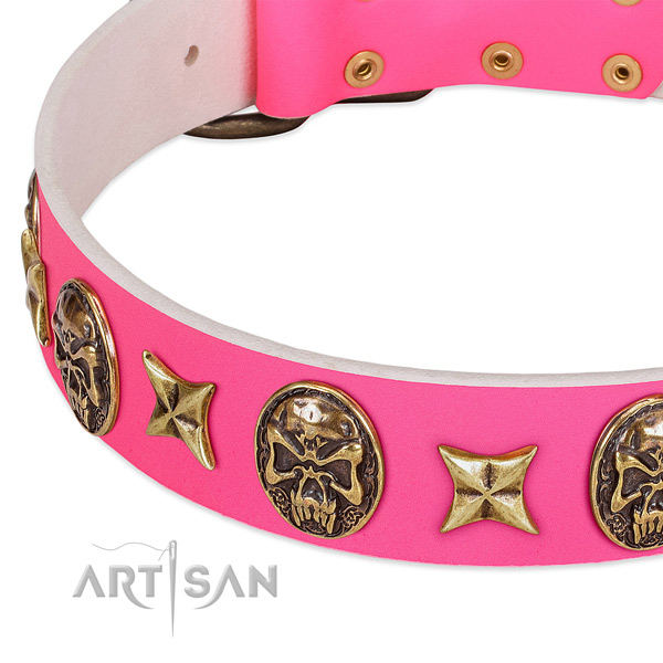 Full grain natural leather dog collar with designer embellishments