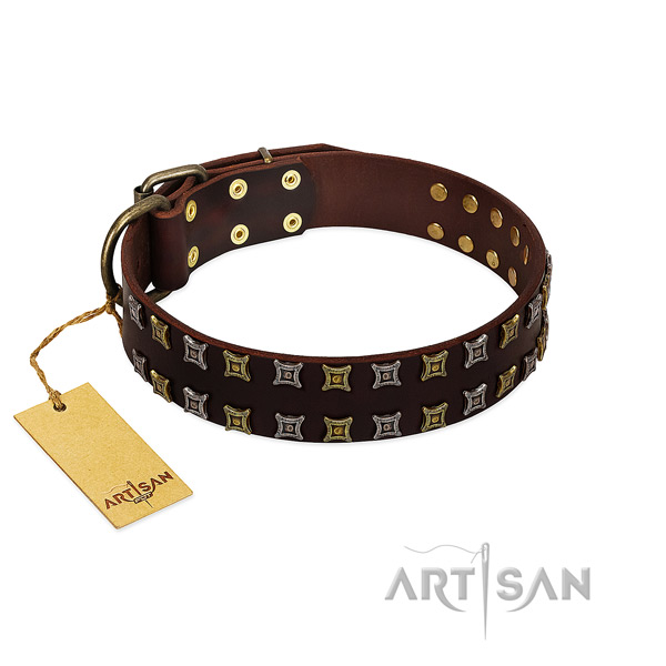 Top notch full grain genuine leather dog collar with embellishments for your dog