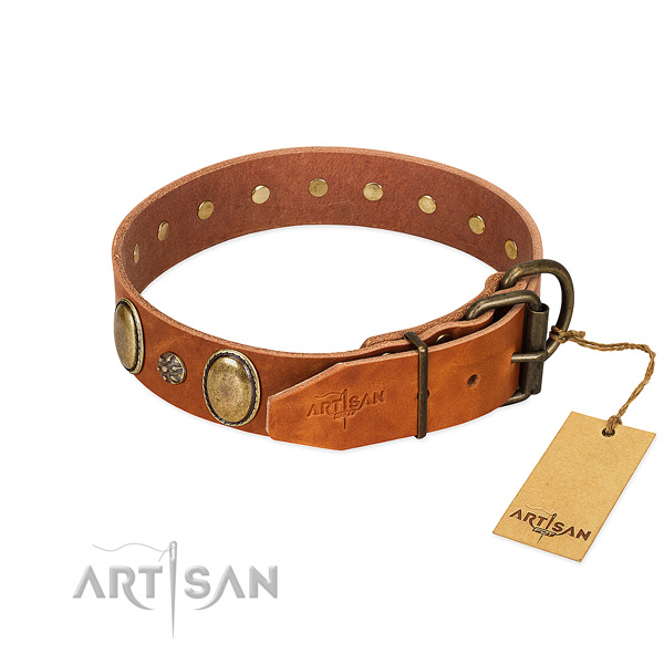 Everyday use best quality full grain leather dog collar