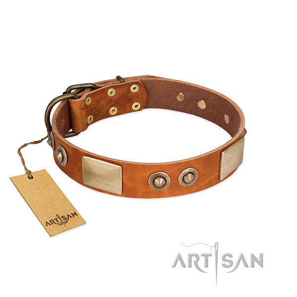 Easy adjustable full grain natural leather dog collar for basic training your canine