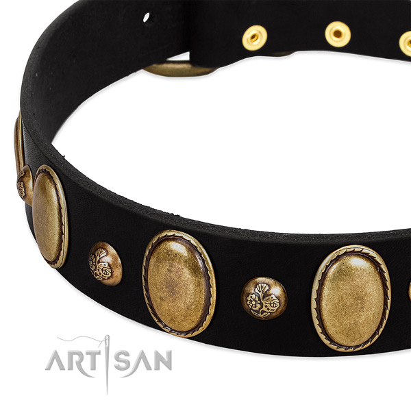 Leather dog collar with extraordinary studs