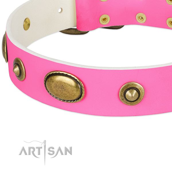 Durable buckle on leather dog collar for your dog