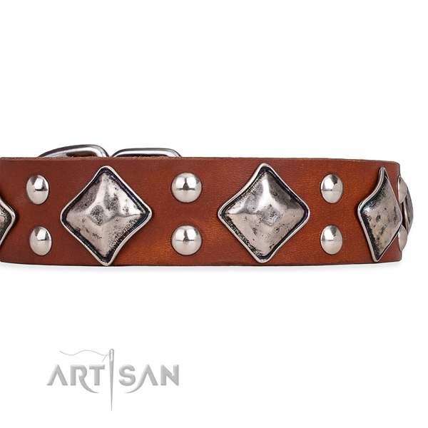 Genuine leather dog collar with incredible strong studs