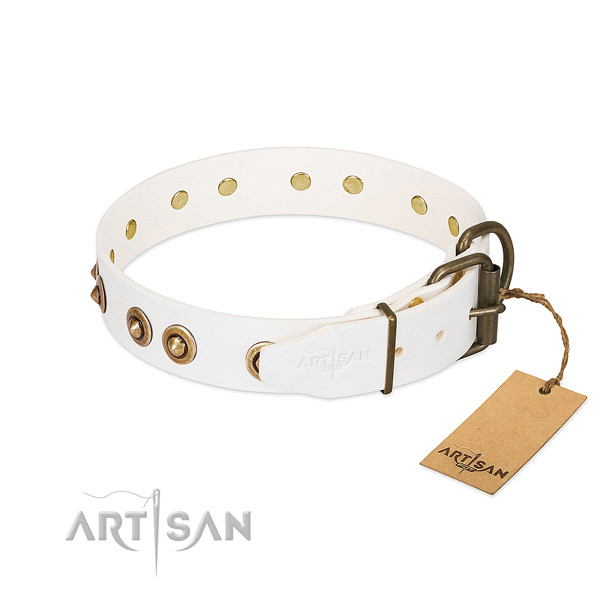 Corrosion resistant studs on full grain natural leather dog collar for your dog