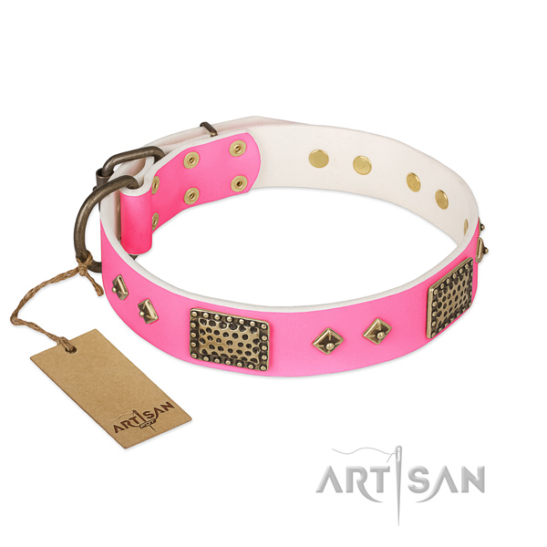 Adjustable full grain leather dog collar for walking your four-legged friend