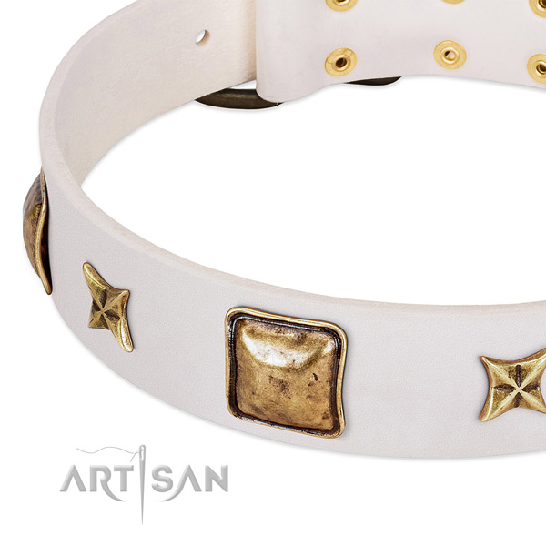 Corrosion proof decorations on full grain leather dog collar for your doggie