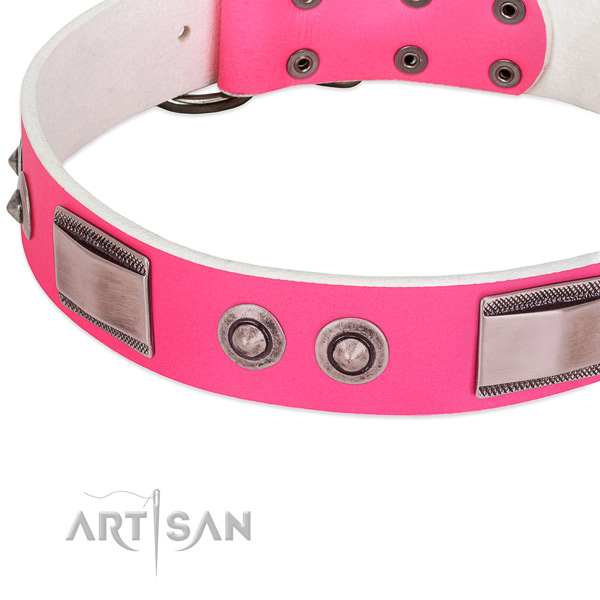 Trendy full grain leather collar with studs for your pet