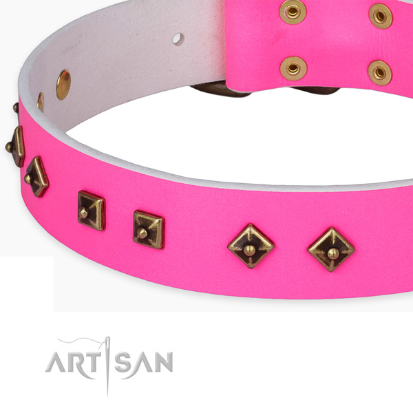 Stunning full grain leather collar for your stylish doggie