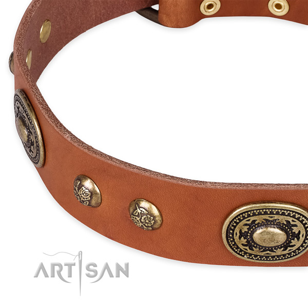 Unique leather collar for your impressive doggie