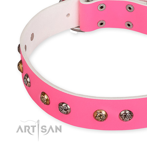 Full grain genuine leather dog collar with remarkable corrosion resistant decorations