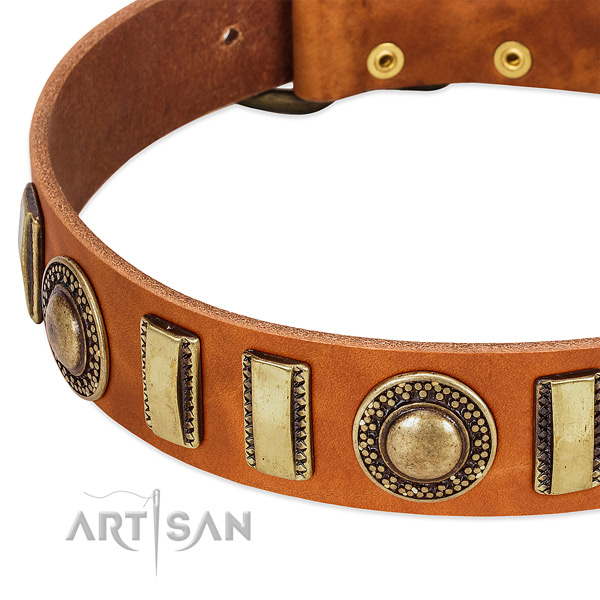 Top rate natural leather dog collar with rust resistant D-ring