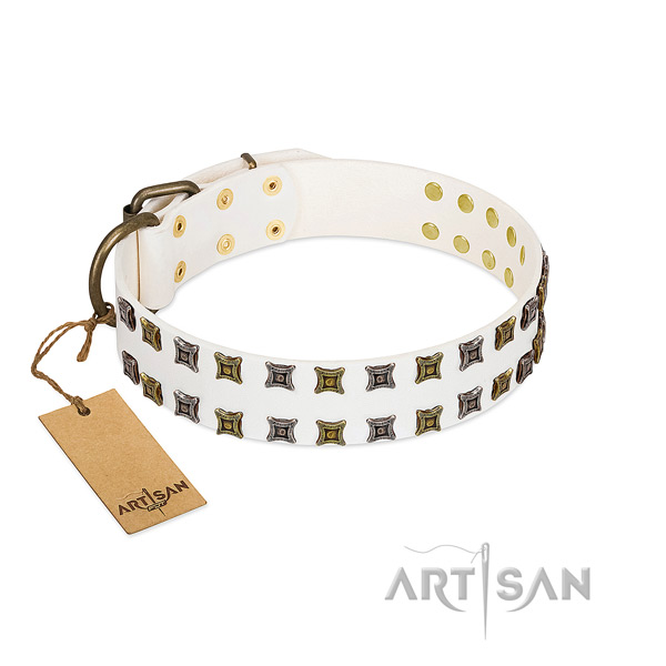 Strong natural leather dog collar with embellishments for your pet