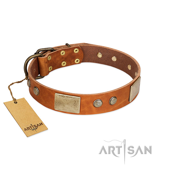 Easy wearing natural genuine leather dog collar for basic training your canine