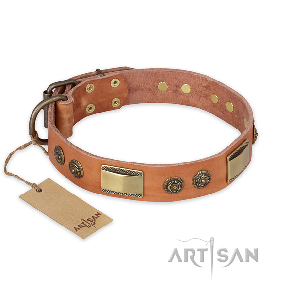 Studded natural genuine leather dog collar for everyday walking