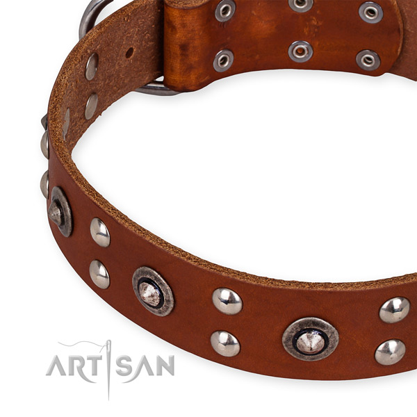 Full grain genuine leather collar with strong fittings for your attractive doggie