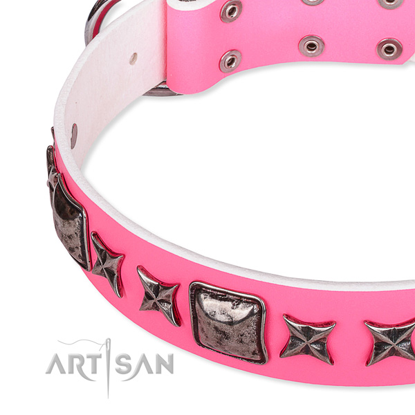Everyday use decorated dog collar of durable full grain natural leather