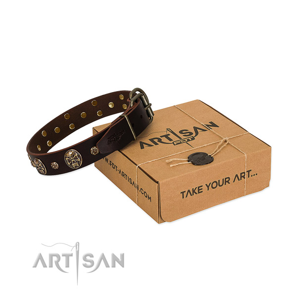 Rust resistant decorations on genuine leather dog collar for your four-legged friend