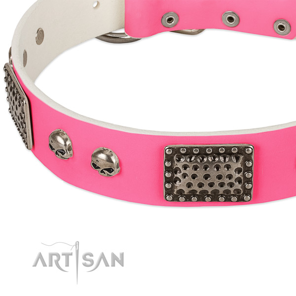 Corrosion proof studs on natural leather dog collar for your pet