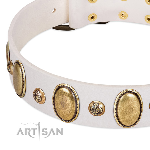 Leather dog collar with stylish design studs