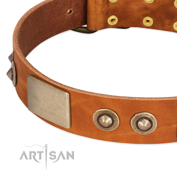 Reliable decorations on full grain genuine leather dog collar for your pet