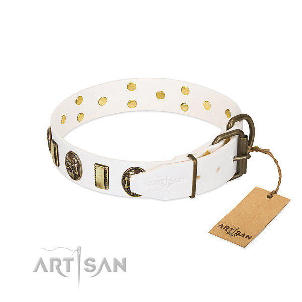 Reliable D-ring on full grain natural leather collar for everyday walking your canine