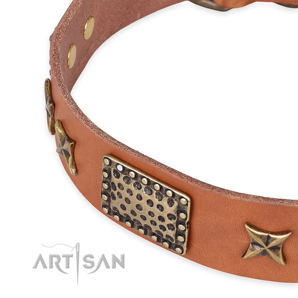 Full grain leather collar with rust-proof traditional buckle for your impressive canine