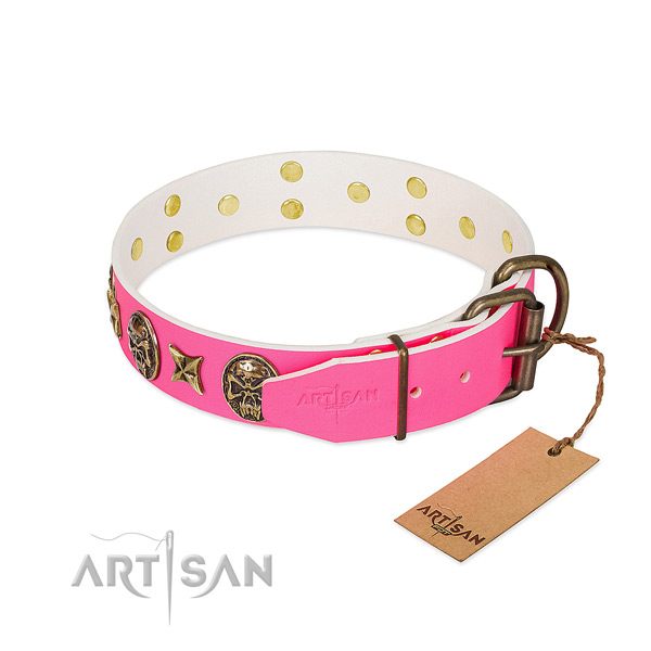 Corrosion resistant fittings on full grain genuine leather collar for everyday walking your pet