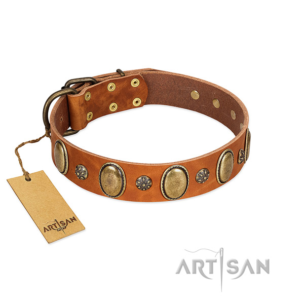 Everyday use gentle to touch leather dog collar with adornments