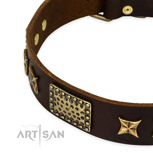 Leather collar with durable buckle for your stylish doggie