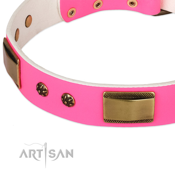 Strong embellishments on full grain genuine leather dog collar for your pet