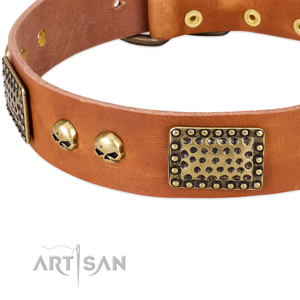 Rust-proof decorations on full grain genuine leather dog collar for your four-legged friend
