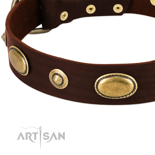 Rust resistant adornments on genuine leather dog collar for your pet