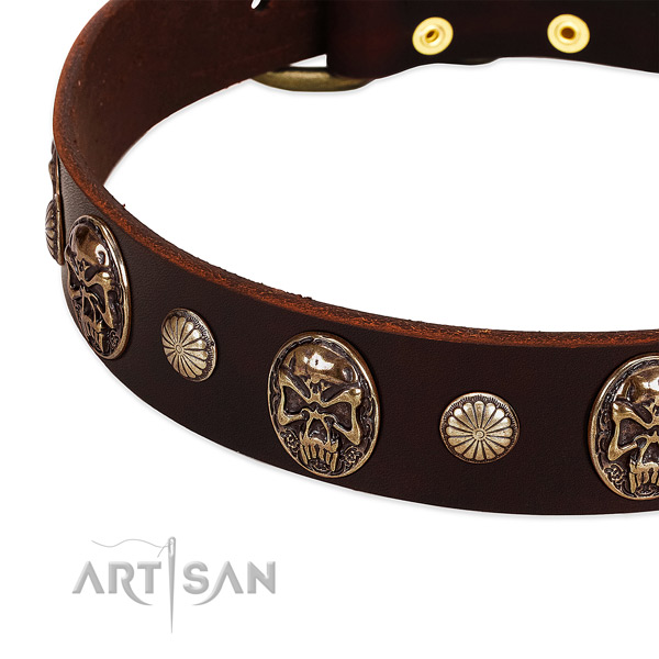 Full grain leather dog collar with embellishments for comfy wearing