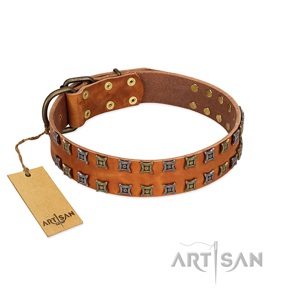 Soft full grain natural leather dog collar with embellishments for your doggie