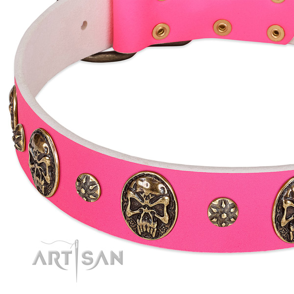 Perfect fit dog collar made for your impressive pet