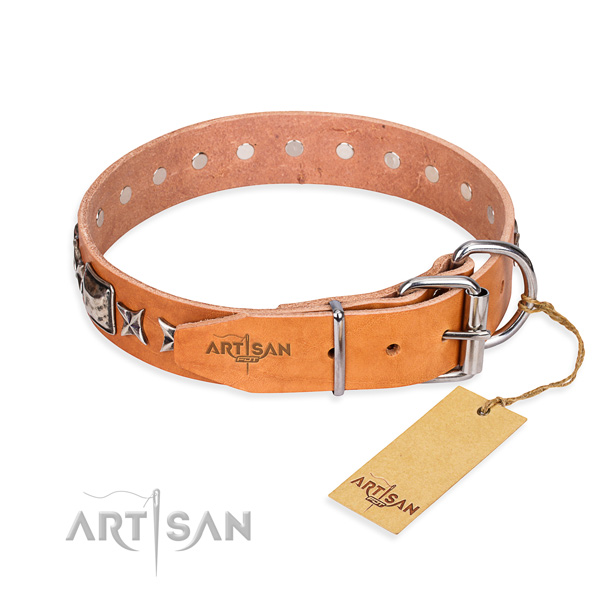 Strong embellished dog collar of genuine leather
