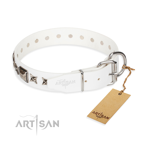 Reliable embellished dog collar of natural leather