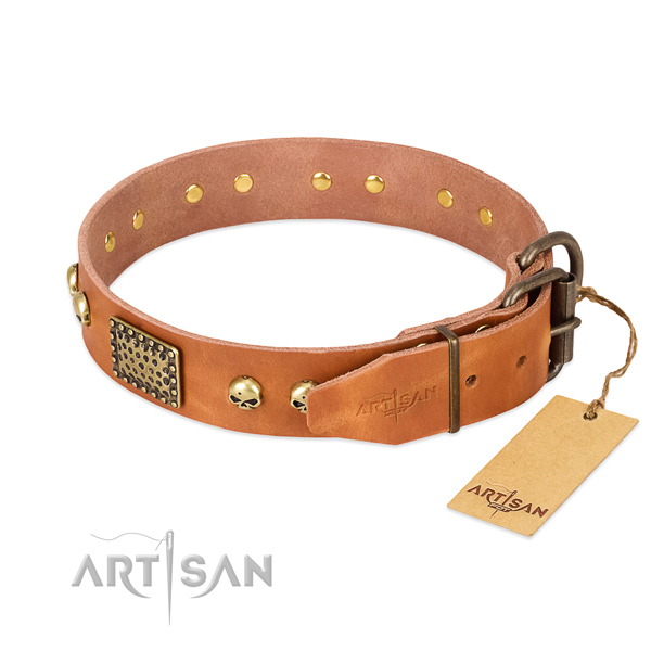 Rust-proof decorations on comfortable wearing dog collar