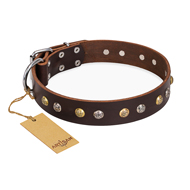 """Rare Flower"" FDT Artisan Brown Leather Dogue de Bordeaux Collar Adorned with Old-look Hemisphere Studs"