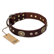 """Breath of Elegance"" FDT Artisan Decorated with Plates Brown Leather Dogue de Bordeaux Collar"