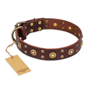 """Caprice of Fashion"" FDT Artisan Brown Leather Dogue de Bordeaux Collar with Round Decorations"