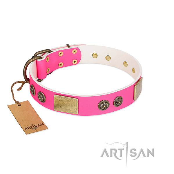 Fashionable natural genuine leather dog collar for walking