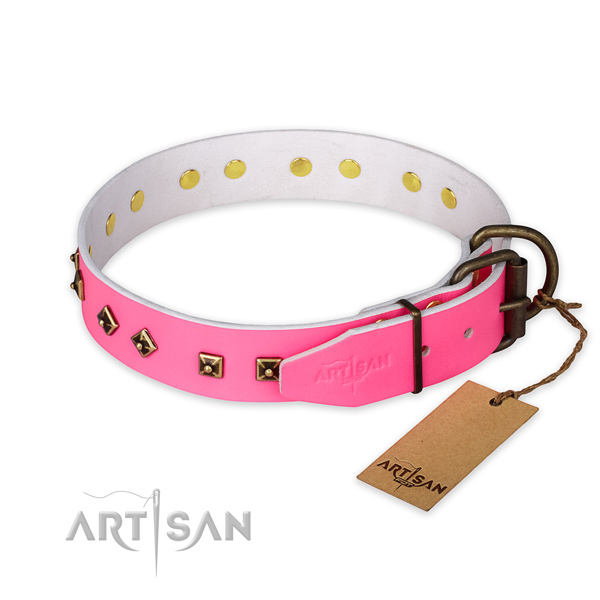 Rust resistant traditional buckle on leather collar for fancy walking your pet
