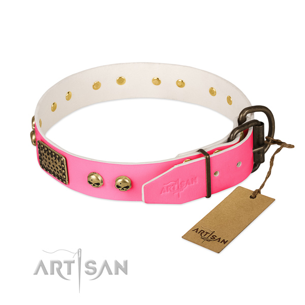 Corrosion resistant fittings on basic training dog collar