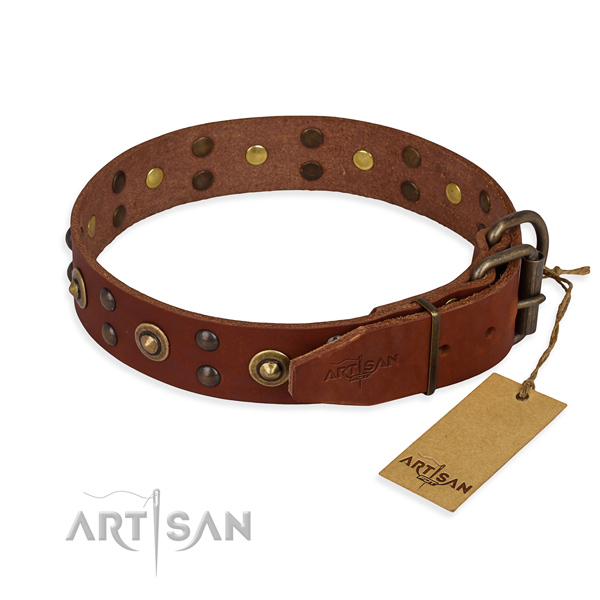 Corrosion proof hardware on leather collar for your impressive dog