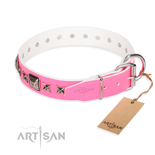 Finest quality studded dog collar of natural leather