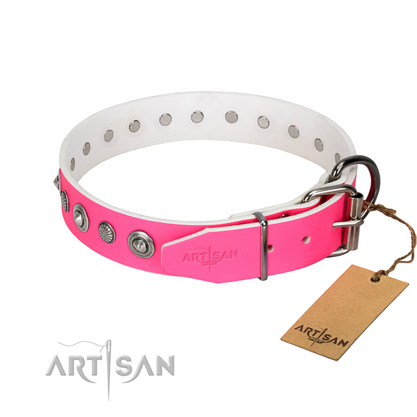 Reliable leather dog collar with remarkable decorations